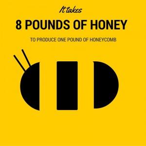 Honeybee 4 (2)