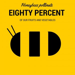 hONEYBEE 2 (POLINATE)