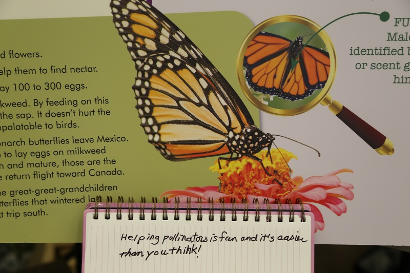 """""""Helping pollinators is fun and its easier than you think!"""" Nell Allen of the North Carolina Zoo"""