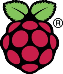 raspberry-pi-logo-212x250