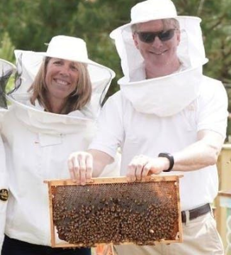 Bee Downtown Hive Tour @ Frontier RTP