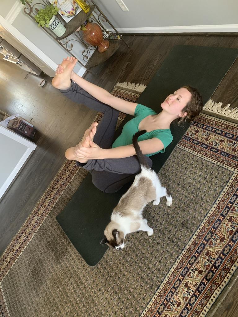 Healthy habits yoga
