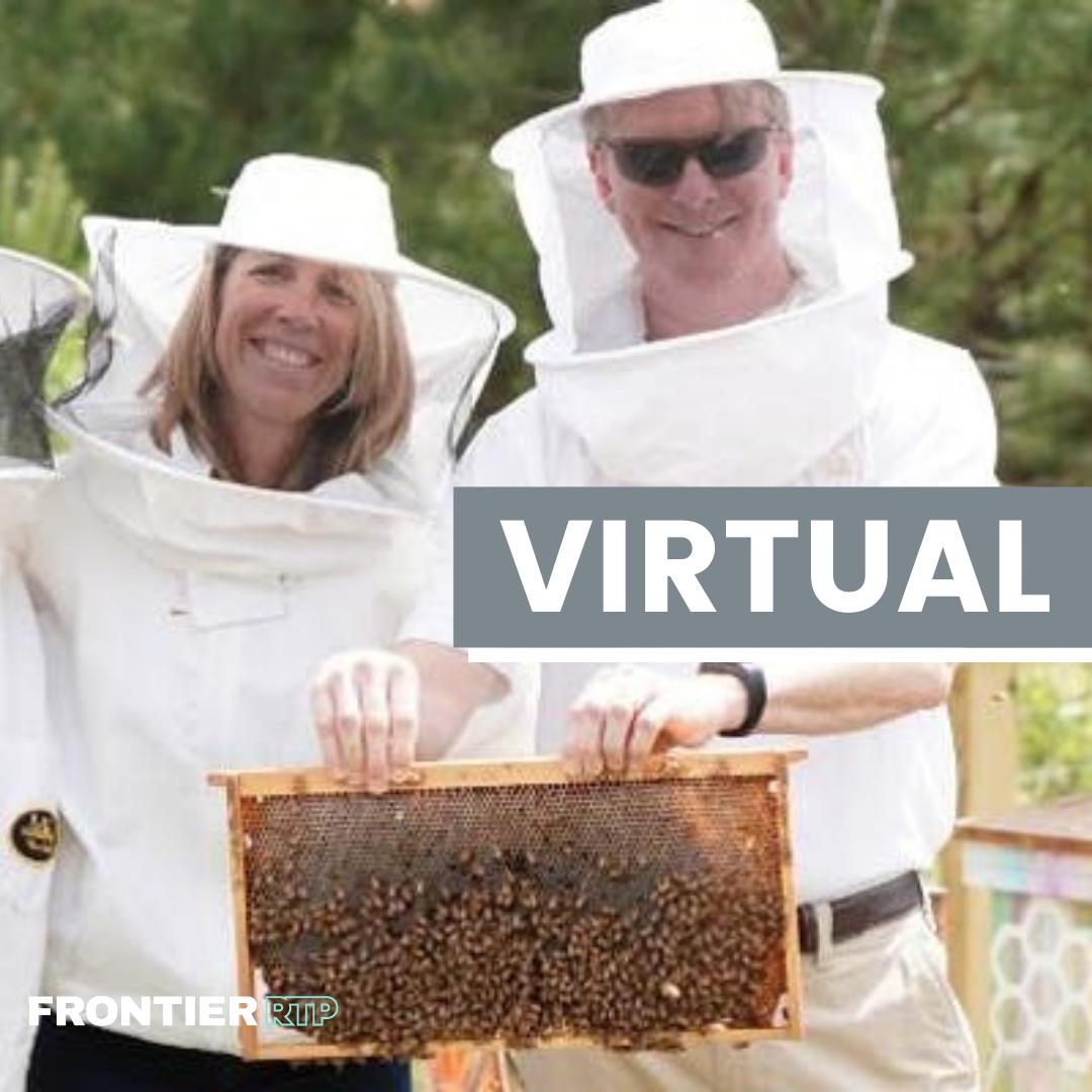 Virtual Bee Tour