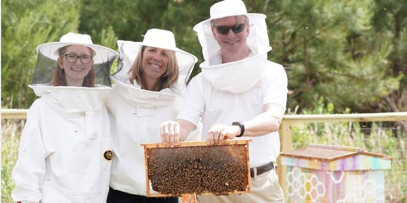 Bee hive tour picture of three attendees in their suit holding a hive